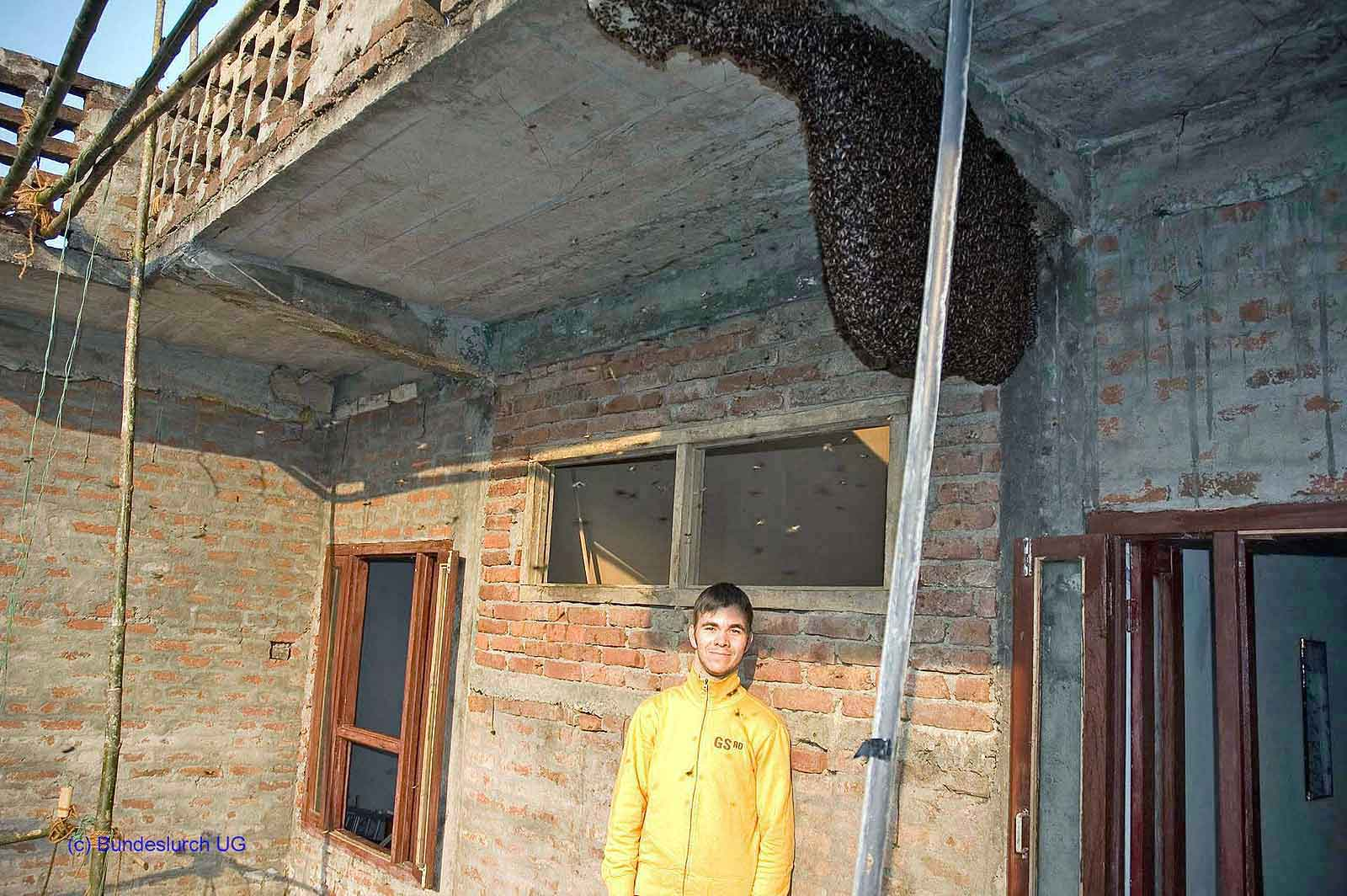 Michael Mauer unterhalb einer Kolonie Riesenhonigbienen im Chitwan Nationalpark in Nepal. (Foto: Klaus Maresch)