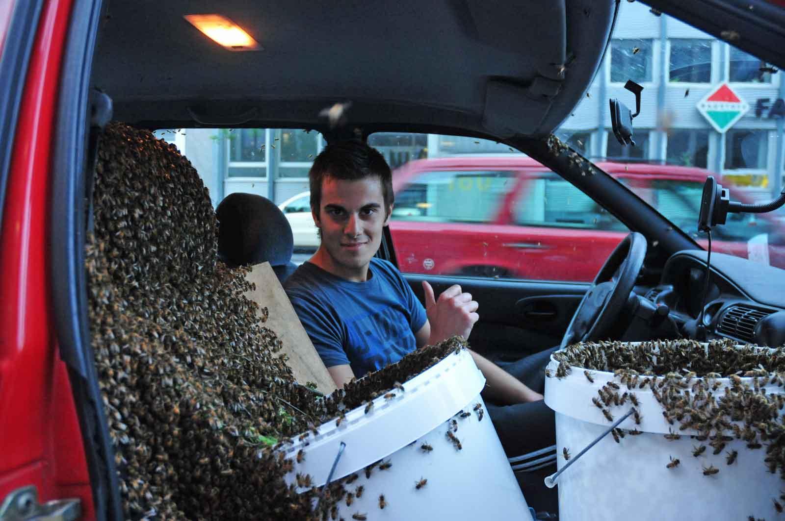 Nicht nur ein Bienenschwarm im Auto, sondern gleich zwei. Abends beim Training bei McFit in Bonn und einige der Sportler nutzten die Gelegenheit für nette Bilder