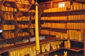 Handgefertigte Bienenwachskerzen aus imkerlicher Produktion
