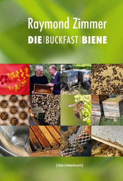 Die Buckfastbiene | Honighäuschen