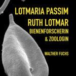 Lotmaria passim | Honighäuschen