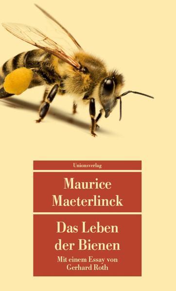 Das Leben der Bienen | Honighäuschen