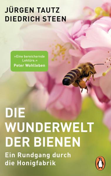 Die Wunderwelt der Bienen | Honighäuschen