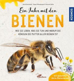 Ein Jahr mit den Bienen: Wie sie leben, was sie tun und warum die Königin die Mutter aller Bienen ist.