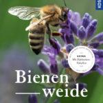 Bienenweide | Honighäuschen
