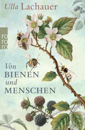 Von Bienen und Menschen | Honighäuschen
