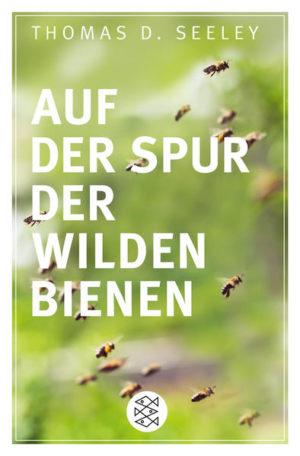 Auf der Spur der wilden Bienen | Honighäuschen
