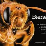 Honighäuschen (Bonn) - Honigsammler im Portrait • Die ganze Bienen-Vielfalt dieser Erde • Faszinierende Nahaufnahmen • Lebensweise außergewöhnlicher Bienenarten Weltweit existieren über 20.000 bekannte und unzählige noch unentdeckte Bienenarten; mehr als alle Säugetier-