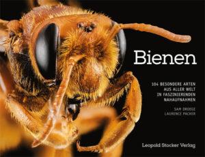 Bienen | Honighäuschen