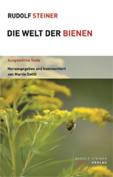 Die Welt der Bienen   Honighäuschen