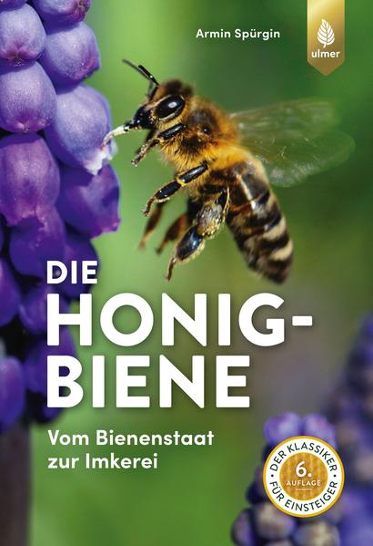 Honighäuschen (Bonn) - Dieser kompakte Ratgeber führt Sie in die Welt der Honigbiene ein und vermittelt viele Informationen zu dem kleinen Insekt. Erfahren Sie
