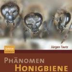 Honighäuschen (Bonn) - Neue Einblicke in die faszinierende Welt der Honigbienen Ob als Lieferanten von Honig und Wachs