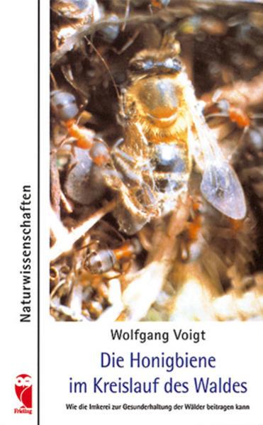 Honighäuschen (Bonn) - Die Honigbiene bildet im Kreislauf des Waldes einen wichtigen Faktor: als Bestäubungsinsekt vieler Pflanzen und als Beutetier für andere Waldbewohner. So sind Honigbienen im Wald Voraussetzung für dessen gesunden Fortbestand.Als die Wald-Imkerei vor Jahren aufgegeben wurde