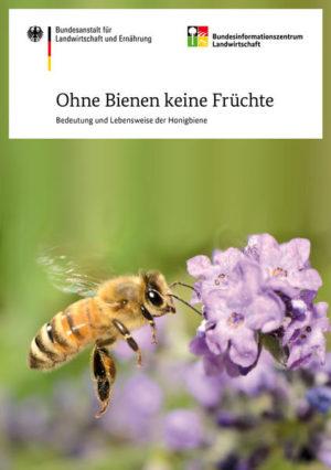 Ohne Bienen keine Früchte   Honighäuschen