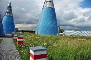 Der Bienenstand der Imkerei Honighäuschen auf dem Dachgarten der Bundeskunsthalle in Bonn. (Foto: Klaus Maresch)
